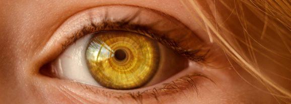 Fundamental: Brilho nos Olhos